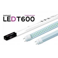 Tubo LED T600 60CM 9W 6500K Luz Fría 750LM Radiant LED - Imagen 1